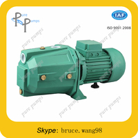 routine europe quality surface jet water pump