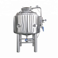 Brite Tank Beer Brewery Equipment For Sale Stainless Steel Bright Beer Tank