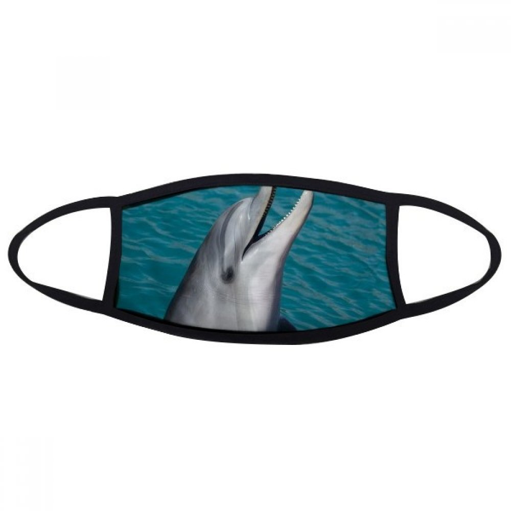 DIYthinker Ocean Water Dolphin Science Nature Picture Face Anti-dust Mask Anti Cold Maske Gift