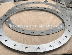 SS316 or SS304 Tanged Metal Reinforced grafoil Graphite Ring Gasket