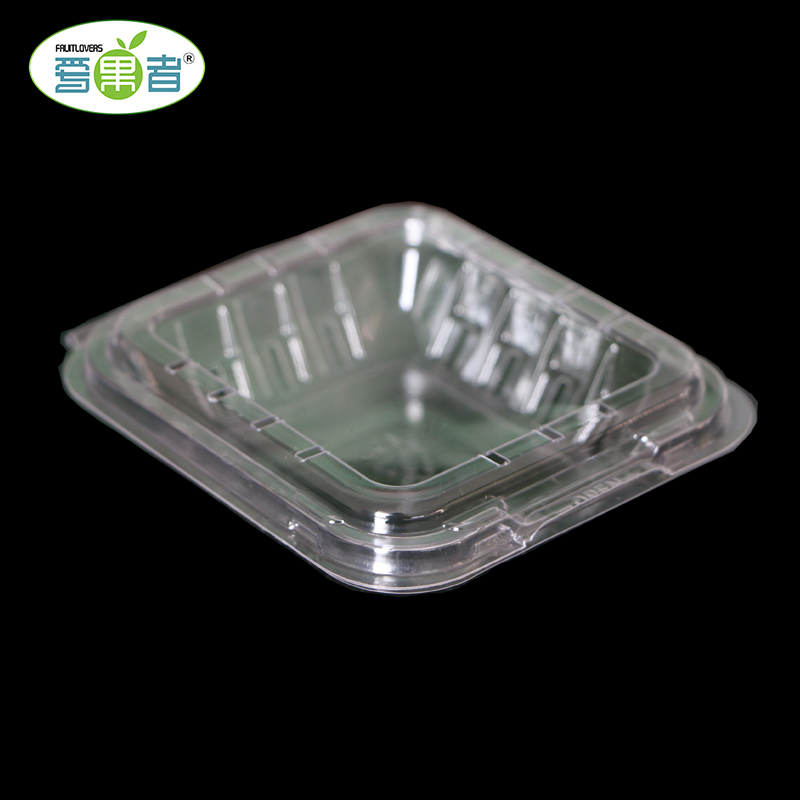 Food grade disposable clear clamshell plastic fruit packing box for blueberry