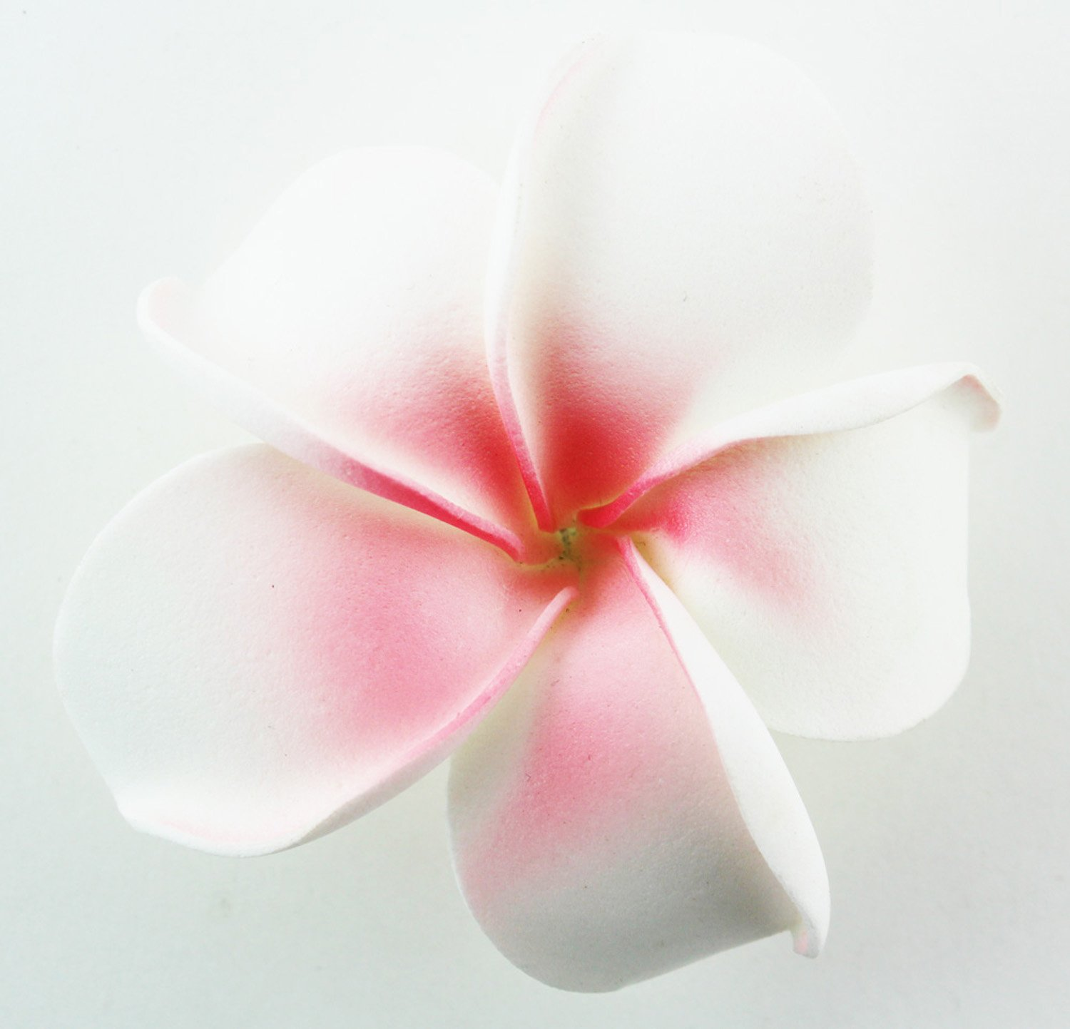Cheap tropical flower types find tropical flower types deals on get quotations hawaiian flower hair clip tropical flower summer hair accessory white pink izmirmasajfo