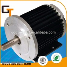 Brand new brushless dc motor motorcycle 12v with high quality