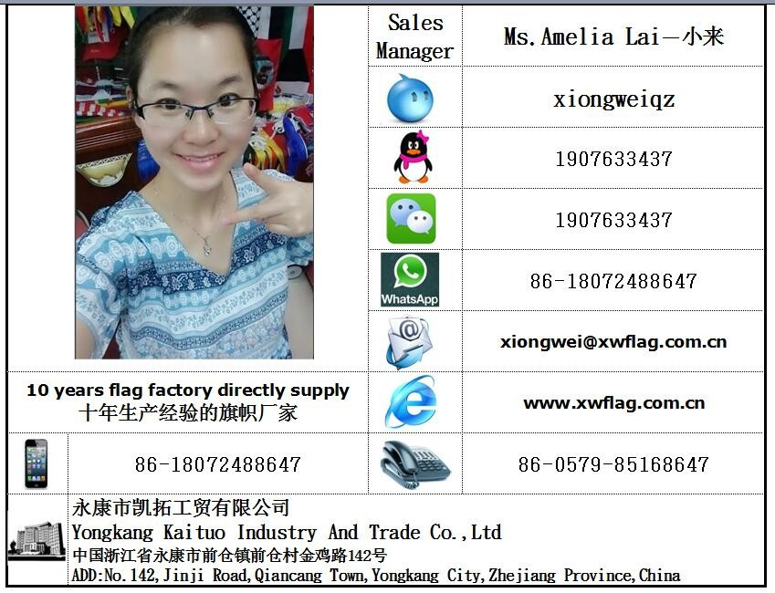 Directly Factory Supply Malaysia Hand Flag And Car Flag