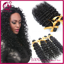 Unprocessed Raw Virgin Malaysian Human Hair 4 Bundles Deep Curly Hair Wefts Cheap Wholesale Price