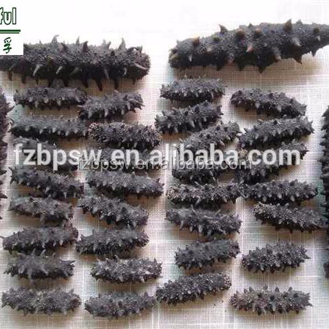 High Quality Sea Cucumber(Stichopus Japonicus) No Additives