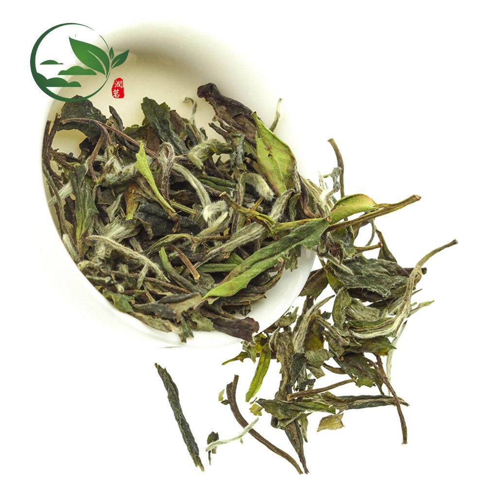 Free Sample Chinese Organic White Peony Pekoe Tea, Pai Mu Dan Bai Mu Dan White Tea - 4uTea | 4uTea.com