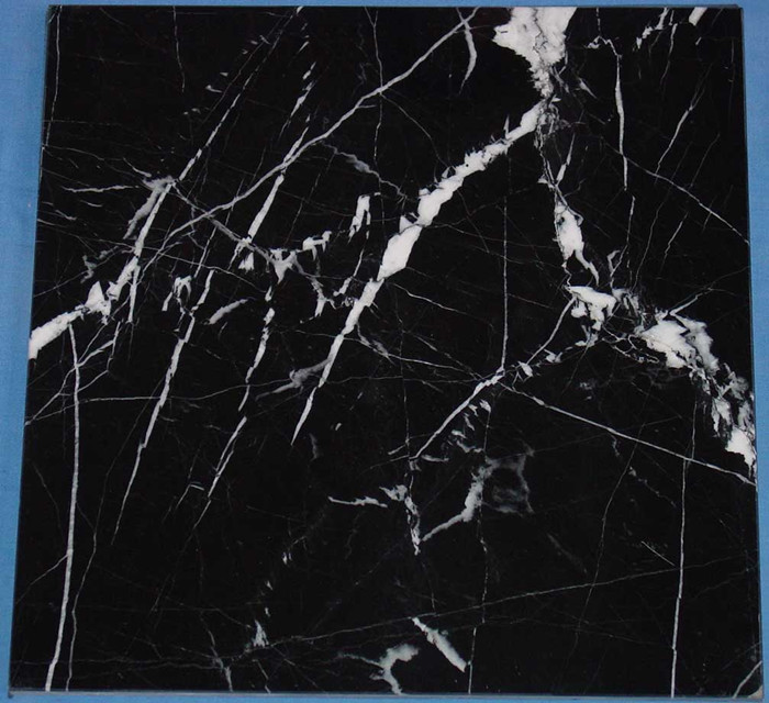 Honed 12x12 Black Nero Marquina Marble Floor Tile With