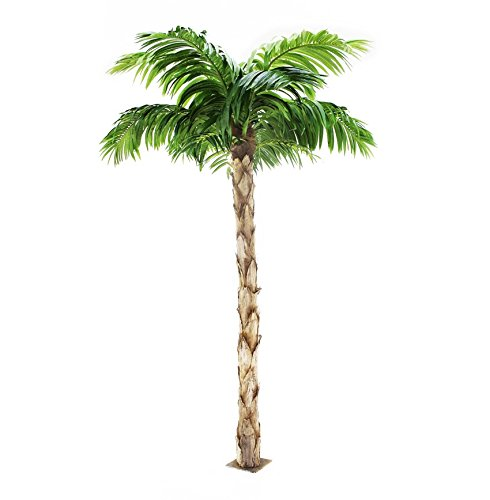 Quality Artificial Peruvian Palm Tree 8ft Tall, Replica Indoor / Outdoor - 240cm Tall