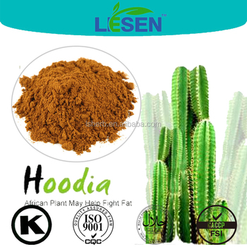 Healthy Plant Extract Hoodia Gordonii Extract Hoodia Gordonii E