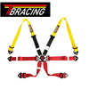 6 Points FIA Certification Car Safety Belt Racing Harness