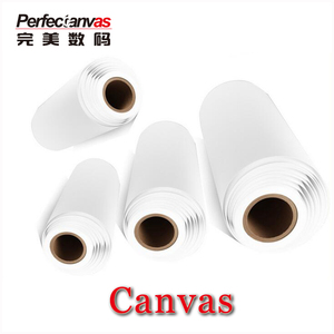 300gsm Waterproof Semigloss Solvent 100 % Polyester Digital Printing Inkjet  Canvas Roll