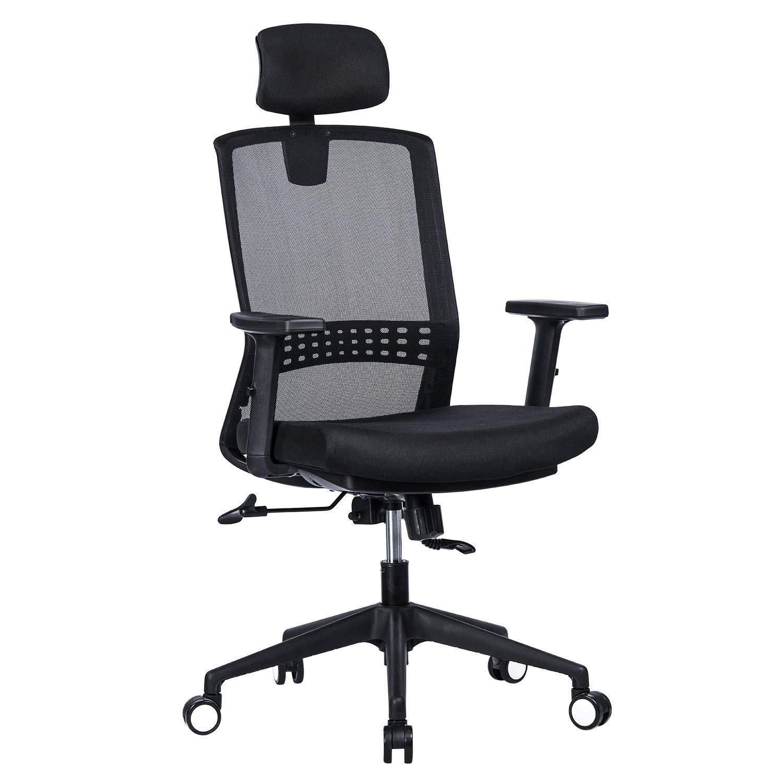 VANBOW Ergonomic High Back Mesh Office Chair - Adjustable Headrest and Arms, 90°-120° Tilt Lock, Adjustable Lumbar Support Computer Desk Task Executive Chair, Black