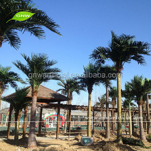 GNW APM049 Large Outdoor artificial palm tree for sale in Guangzhou