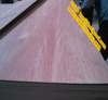 2.6 meters large size plywood from lisen wood