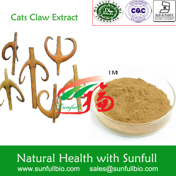 Cat's Claw Extract/Gou teng extract/helping lower blood pressure