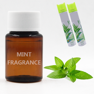 Factory Direct Sale Mint Flavor Concentrate Oil Use Making Air Freshener