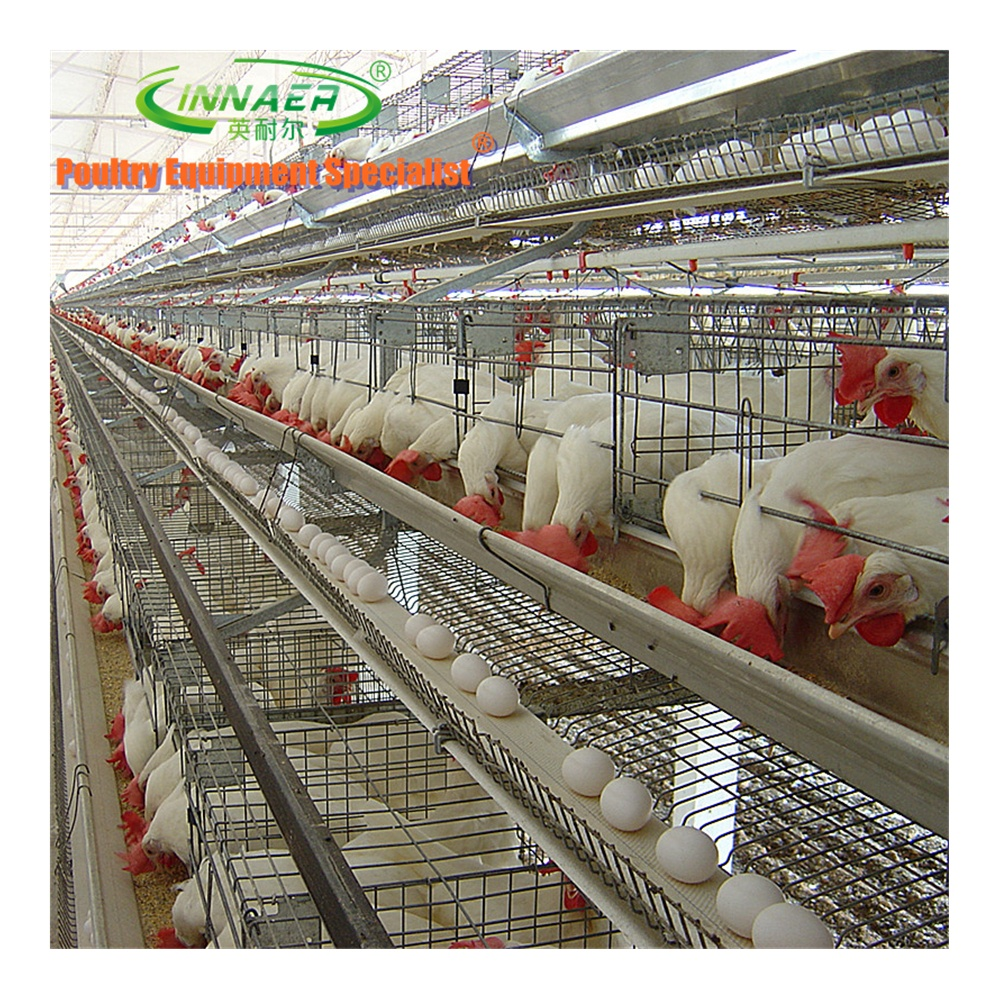 Attention!Hot Sale Cheap <strong>Chicken</strong> Duck Cage for Farming