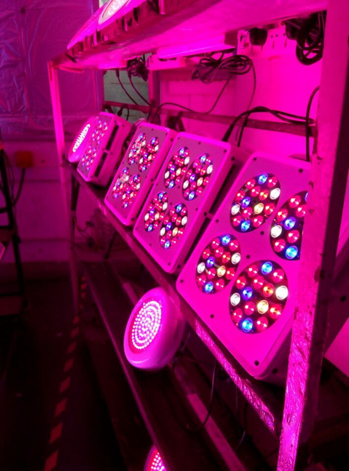 Cheapest And 60*3w Cidly Led 4 Led Grow Lights,Good For ...