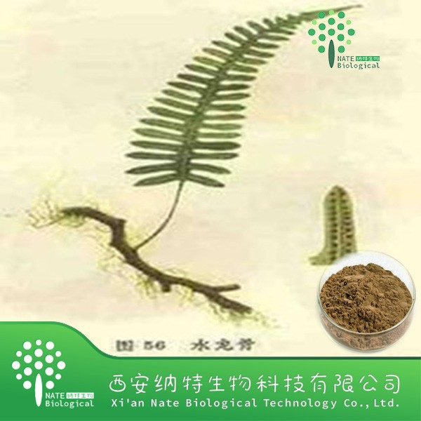 Top Quality From 10 Years experience manufacture polypodium leucotomos extract