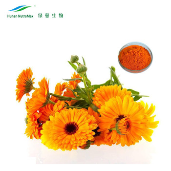 Chinese Supplier Lutein Powder 80 Marigold Extract By HPLC UV VIS