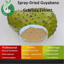 soursop Annona/Annona squamosa extract/Spray-Dried Guyabano Graviola Extract