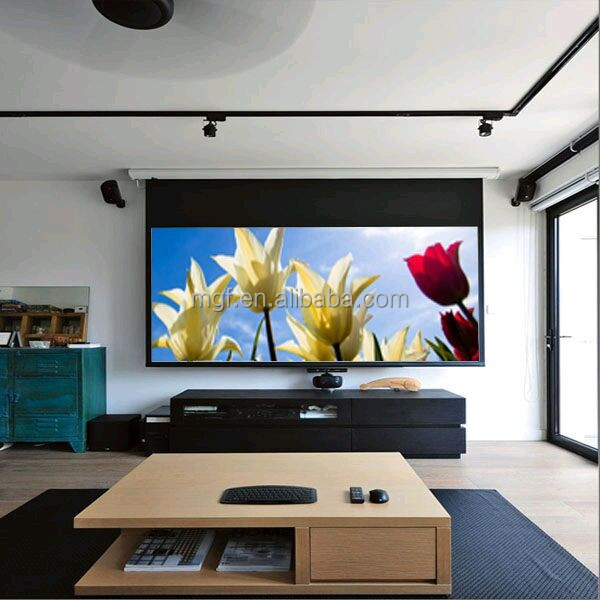 4k Hd 3d 4 3 Recessed In Ceiling Projector Screen With