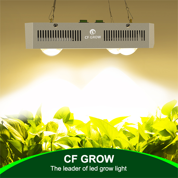 China Manufacturer Citizen CLU048 1212  3500K 5000k  LED Grow Light 600W