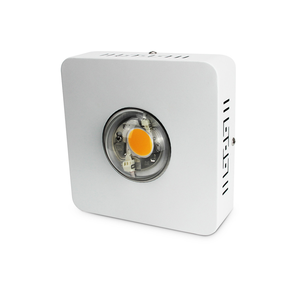 COB LED Grow Light Full Spectrum <strong>CREE</strong> CXB3590 100W Growing Lamp Indoor LED Plant Growth Lighting