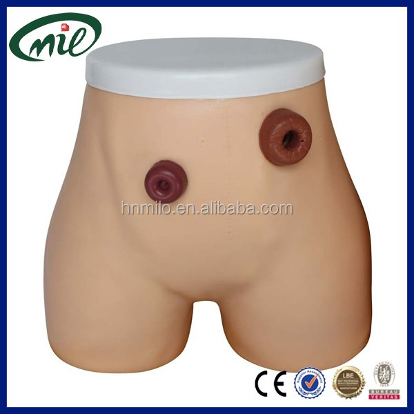 Advanced human Ostomy Care Simulator / Ostomy nursing models