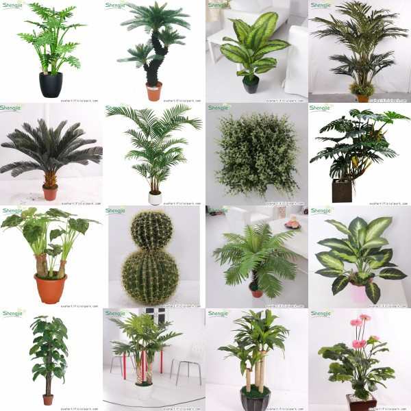 Marvelous Real Indoor Trees Part - 2: Artificial Grapefruit Tree For Landscaping Indoor Decoration,fruit Tree  With Real Touch Fruit