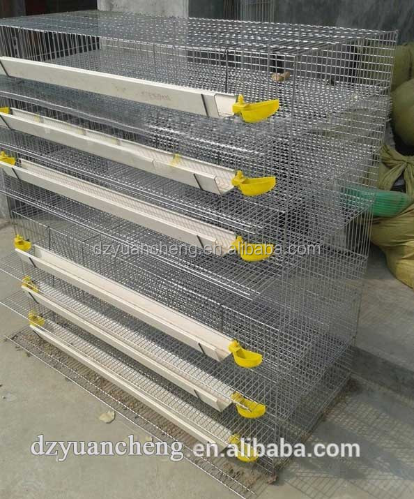 high quality New Type Wire Mesh Quail Cage For Laying Hen With Clear Plastic Quail Egg Tray(H & A type)
