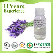 China Manufacturer Free Sample Perfume Oil Bulk Natural Essential Lavender Oil