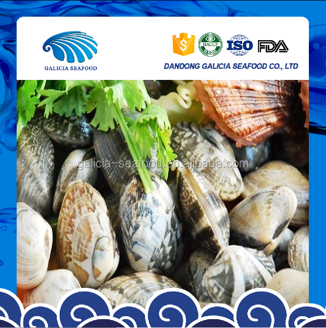 Fresh Frozen Boiled Baby Clam Shell-On