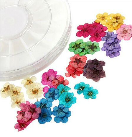 Nail suppliers for nail art dry flower 3D nail art decorations