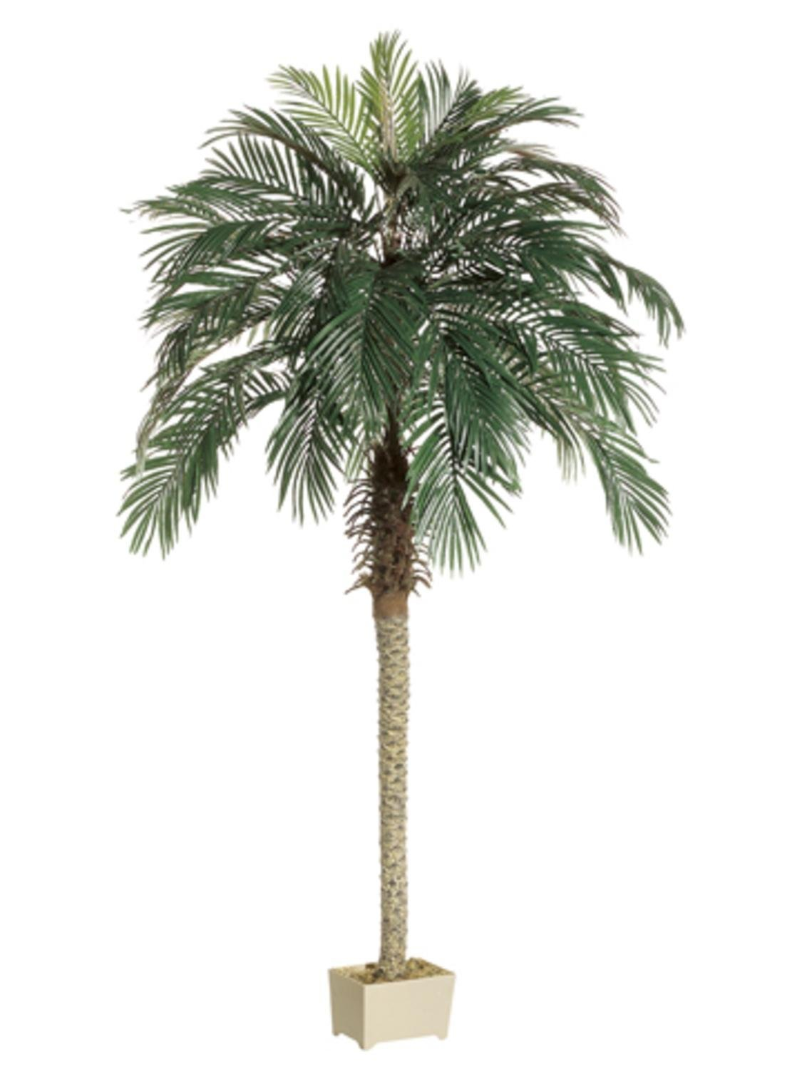 Pack of 2 Potted Artificial Silk Phoenix Palm Trees 7'