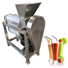 pineapple juicer machine processing/apple juicer processing line