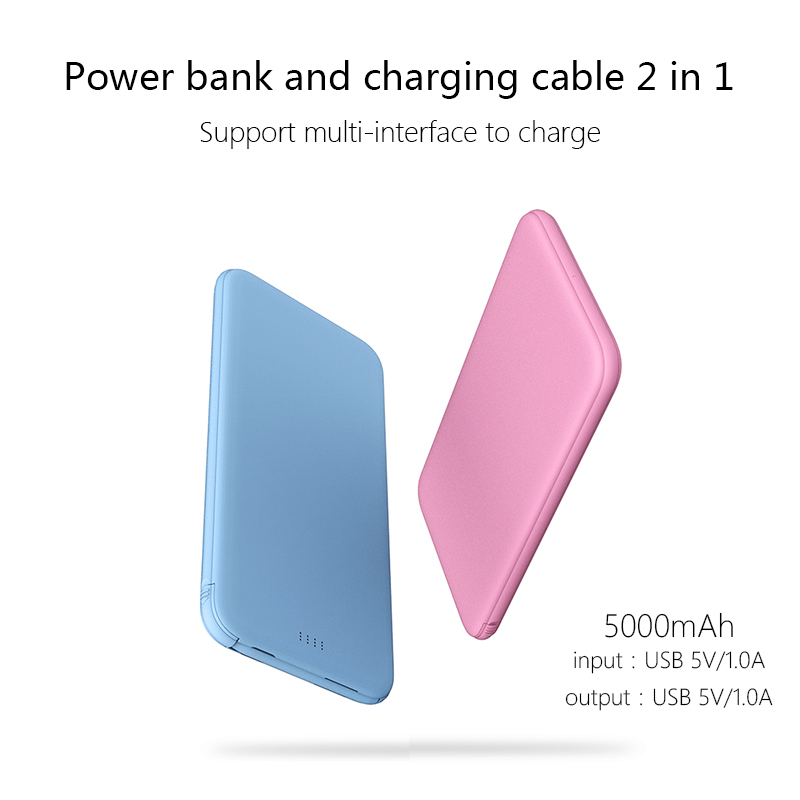 5000mAh Wholesale Power Bank with Dual Output Ports Ultra Slim Backup Battery with Charging Adapter for iPhone
