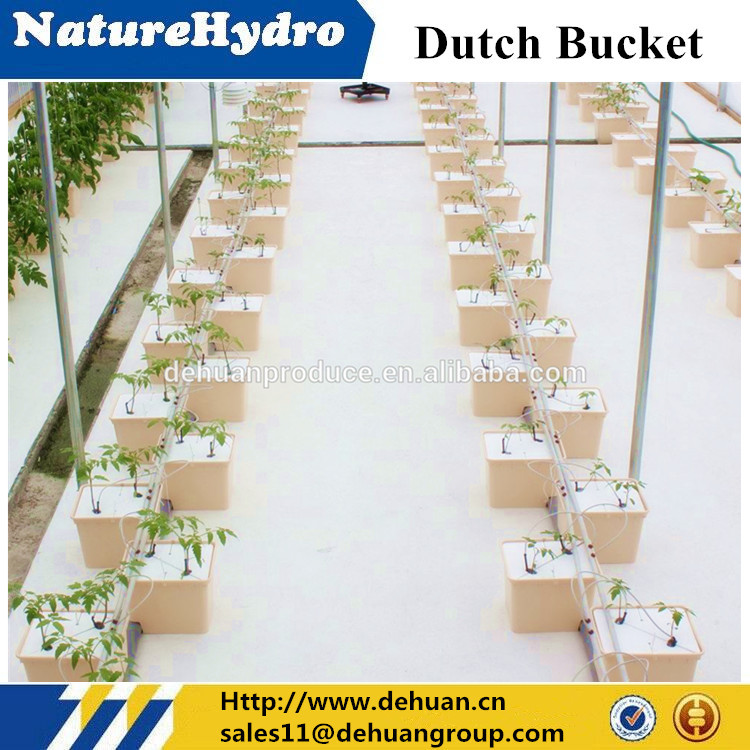 Eco-friendly agriculture hydroponic dutch bucket for vegetables