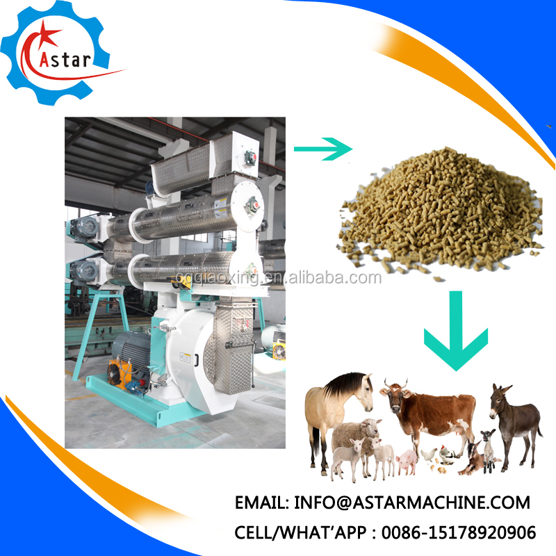 Small Scale with New Technology Cattle Feed Production Unit For Sale