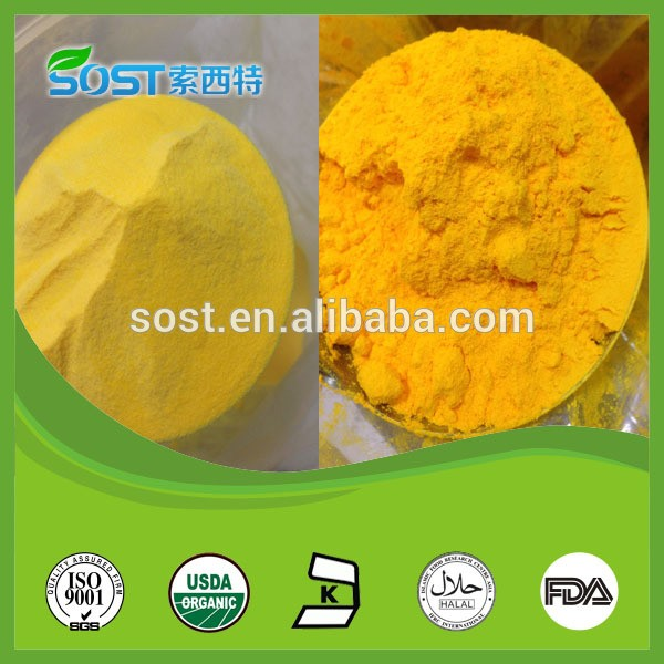 Plant extraction coenzyme q10 98% water soluble