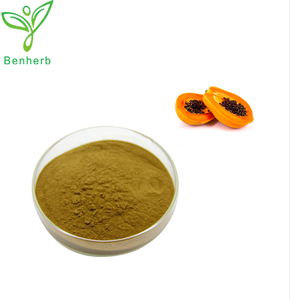100% Pure plant extract natural Papaya Extract powder/Papain Enzyme extract