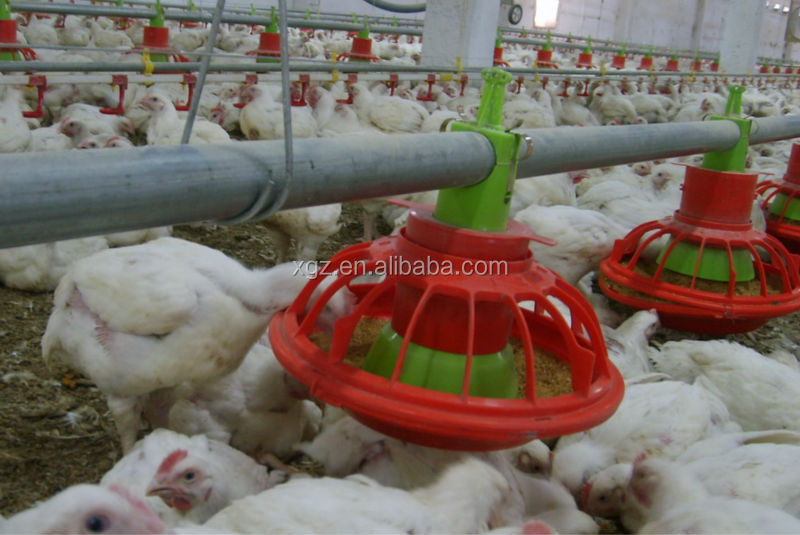 china best price high quality prefabricated broiler poultry farm house design