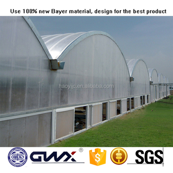 10mm Solid Polycarbonate Sheet Greenhouse Roofing Materials At Best Price