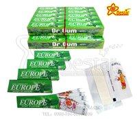 Sugar Free 5 Sticks Mint Flavor Chewing Gum with Tattoo Paper