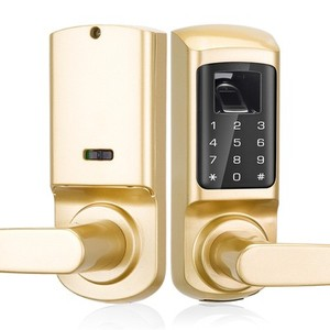 Semiconductor smart keypad fingerprint mortise door locks with cylinder Lock body