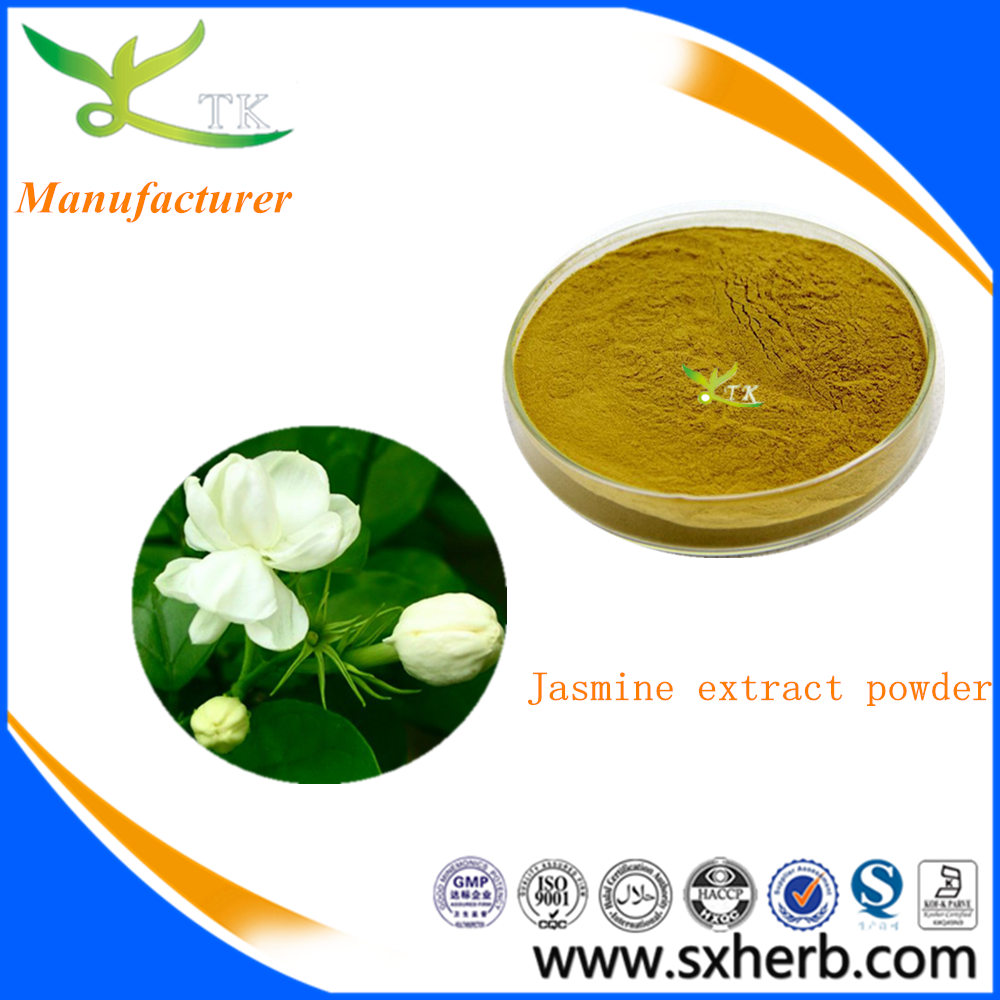 Natural Jasmine Plant Extract Fresh Jasmine Flowers Extract Powder