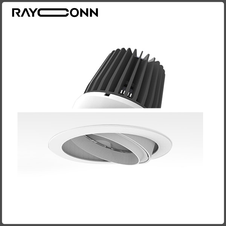 40W Ceiling Recessed COB LED spotlight for Exhibition Shop Gallery Showroom