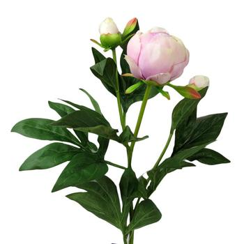 25 Peony Bud Spray Pink Flower Decoration In Stage