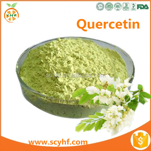 Factory Supply Sophora Japonica Extract Quercetin Powder